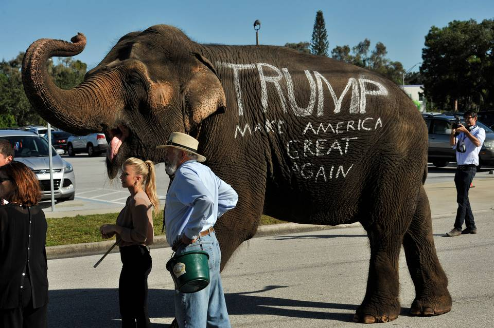 Un elefante le da la bienvenida a los participantes en un acto de campaña del precandidato republicano Donald Trump, el sábado en Sarasota, Florida. Steve Nesius, AP