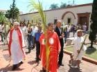 Católicos demostraron su devoción en la Catedral ayer Domingo de Ramos, que da inicio a la Semana Santa.