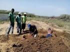 Hombres hacen hoyo para enterar haitianos fuera de cementerio en Los Cocos, Montecristi.