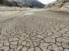 La sequía ha matado miles de reses y secado miles de tareas cosechadas.
