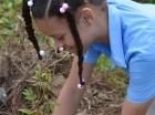 Estudiante siembra árbol.