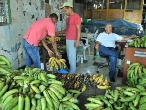 Los plátanos no han sido los únicos productos que han experimentado un alza de precios en los mercados dominicanos. Según comerciantes, la yuca, yautía, batata y ñame se unen a la lista de productos que están más caros. Vendedores admitieron que de