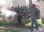 La jornada de fumigación eliminó criaderos de mosquitos.