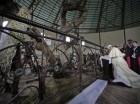 El papa Francisco se arrodilla para rezar durante una visita a un santuario en honor de mártires anglicanos en Namugongo, Kampala, Uganda, el 28 de noviembre de 2015. El papa Francisco realiza una visita de seis días a África que lo llevará a Kenia, U