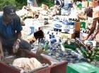 Cada día son más las personas que entran a la cadena del reciclaje en el país.