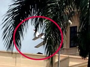 El IDAC anunció la suspensión de la licencia del piloto Pércival Peña y abrió una investigación. Dice fue una provocación.
