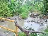 Cloaca afecta cañada y salud moradores barriada Santiago.