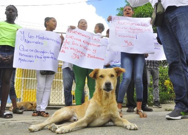 Un perro acompaña a una comunidad a reclamar la solución de problemas, bien se dice que son el mejor amigo del hombre.